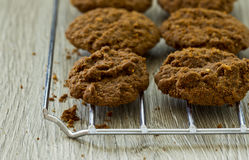 American nut cookies on a cooling rack Stock Image