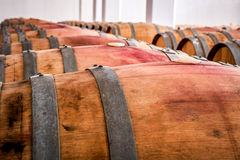 American oak barrels with red wine. Traditional wine cellar Stock Images