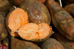 American orange sweet potato. Detail stock photos