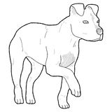 American Pit Bull Terrier. Animal Cartoon Art Stock Photo