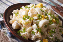 American Potato salad with chives and egg close-up. horizontal Royalty Free Stock Photography