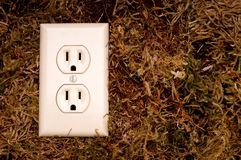 An American power outlet on moss Stock Photography