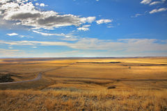 The American prairie Royalty Free Stock Photo