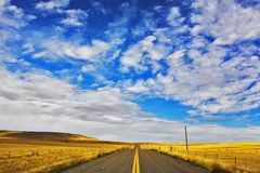 The American prairie in  September. A yellow grass and the American road Royalty Free Stock Photography