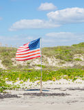 American Pride. The American flag planted in sand dunes by the beach flutters in the breeze Royalty Free Stock Photo