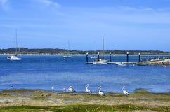 American River, Kangaroo Island Stock Photo