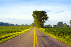 American Road with SunLight Stock Photo