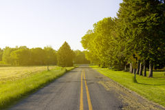 American Road with SunLight Royalty Free Stock Image