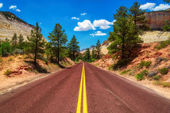 American road in Zion Canyon National Park, Utah Royalty Free Stock Photo