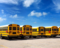 American school bus row under blue sky Stock Photos