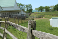 The American Small Farm. The small American farm still struggles to be profitable but many are finding a niche in suppling the farm to table type of restaurants Royalty Free Stock Photo