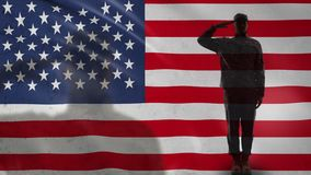 American soldier silhouette saluting against national flag, military forces. Stock footage stock video footage