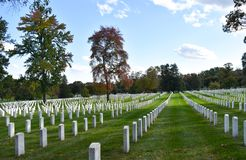 American soldier white stone grave stones at Arlington National royalty free stock photos