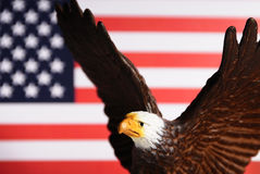 American symbols Royalty Free Stock Photos