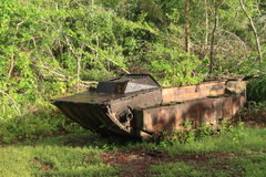 US tank from WWII. American tank from World War II in tropical forest on Peleliu island in Palau Royalty Free Stock Photo