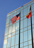 American and Texas flags in front of building Royalty Free Stock Images