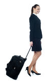 American tourist dragging her trolley bag. Businesswoman with a trolley bag isolated on white background Royalty Free Stock Image