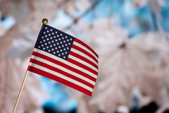 American toy flag over autumn leafs. Royalty Free Stock Image