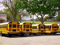 American typical school buses row in a park outdoor Royalty Free Stock Photo