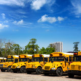 American typical school buses row in a parking lot. American typical school buses in a row in a parking lot Royalty Free Stock Photography