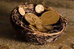American US Eagle Gold Coin Nest Egg Stock Photos