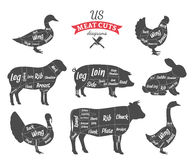 American (US) Meat Cuts Diagrams. American (US) cuts of beef, pork, lamb, rabbit, chicken, duck, goose and turkey diagrams stock illustration