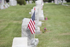 American Vet Royalty Free Stock Photos