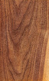 American walnut (wood texture) Royalty Free Stock Images