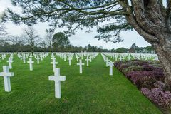 American War Cemetery near Omaha Beach, Normandy & x28;Colleville& x29; Royalty Free Stock Photos