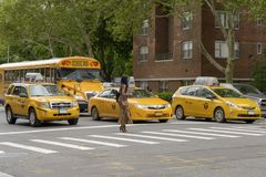 The American woman crosses the pedestrian crossing while the tax. New York City, USA - June 08, 2017: New York yellow taxi cab stop at pedestrians traffic lights Royalty Free Stock Photo