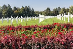 American WW2 Cemetery with rose bush and headstones in Luxembourg. American WW2 Cemetery with rose bush and headstones of 5073 buried soldiers near Hamm in royalty free stock photography