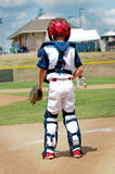 American youth little league catcher Stock Photography