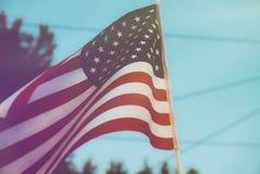 Americana Flag Suburbia Royalty Free Stock Image