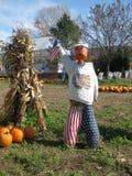 americana scarecrow Arkivfoto