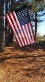 Americana Vlagoprijlaan Stock Foto