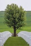 Americanen kriger kyrkogården - Sommen - Frankrike Arkivfoton