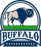 Americano Bison Buffallo Banner Circle Woodcut Illustrazione di Stock