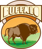 Americano Bison Buffalo Oval Woodcut Fotografía de archivo