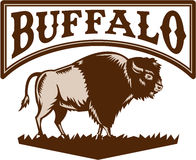 Americano Bison Side Woodcut della Buffalo Royalty Illustrazione gratis