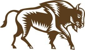 Americano Bison Woodcut Fotografia Stock Libera da Diritti