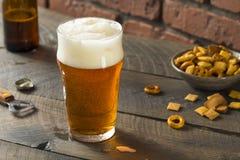 Americano de restauración Lager Crafter Beer del frío fotografía de archivo