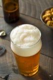 Americano de restauración Lager Crafter Beer del frío foto de archivo