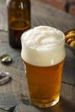 Americano de restauración Lager Crafter Beer del frío fotos de archivo libres de regalías