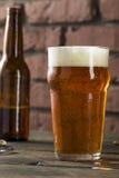 Americano de restauración Lager Crafter Beer del frío imagen de archivo