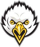 Americano Eagle Head Screaming Retro calvo Fotografía de archivo