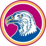 Americano Eagle Head Side Circle Retro calvo Imagen de archivo libre de regalías