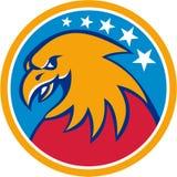 Americano Eagle Head Stars Circle Retro calvo Fotografía de archivo libre de regalías