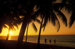 AMERIKA CARIBBIAN HAVSDOMINIKANSKA REPUBLIKEN Royaltyfria Bilder