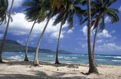 AMERIKA CARIBBIAN HAVSDOMINIKANSKA REPUBLIKEN Fotografering för Bildbyråer