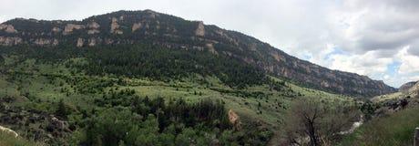Amerika das schöne: Big Horn-Berge, gewelltes Wyoming Stockfotografie